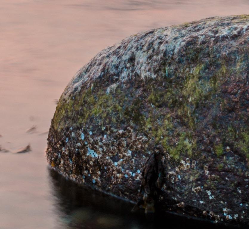 Sharp-stone.jpg